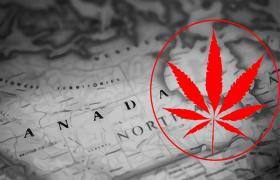 Cannabis and International Travel