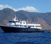 UnCruise through the Hawaiian Islands with Marine Life